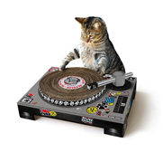 The DJ mixing decks cat scratch gift