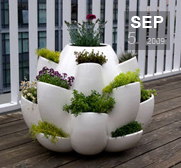 The Nature Planter gift from Design Night