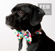 The colorful cubes bow tie dog collar gift
