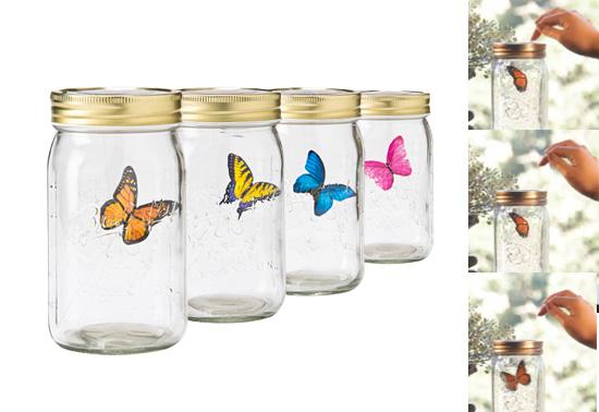 Fluttering butterfly in a jar the butterfly in a jar gift