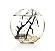 The EcoSphere� ecosystem gift inspired by NASA