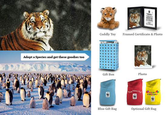 WWF's adopt an animal species gift