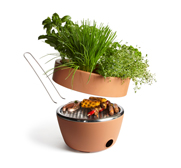 The plant Hot-Pot BBQ gift by Black + Blum