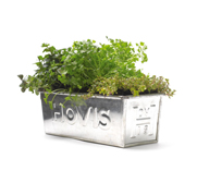 The Hovis planting pot tin gift