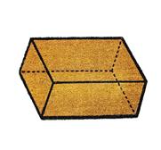 The parallelogramm doormat gift by Vladimir Pavlenko