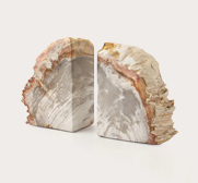 Petrified wood bookend gifts