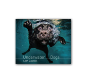 The Underwater Dogs book by Seth Casteel